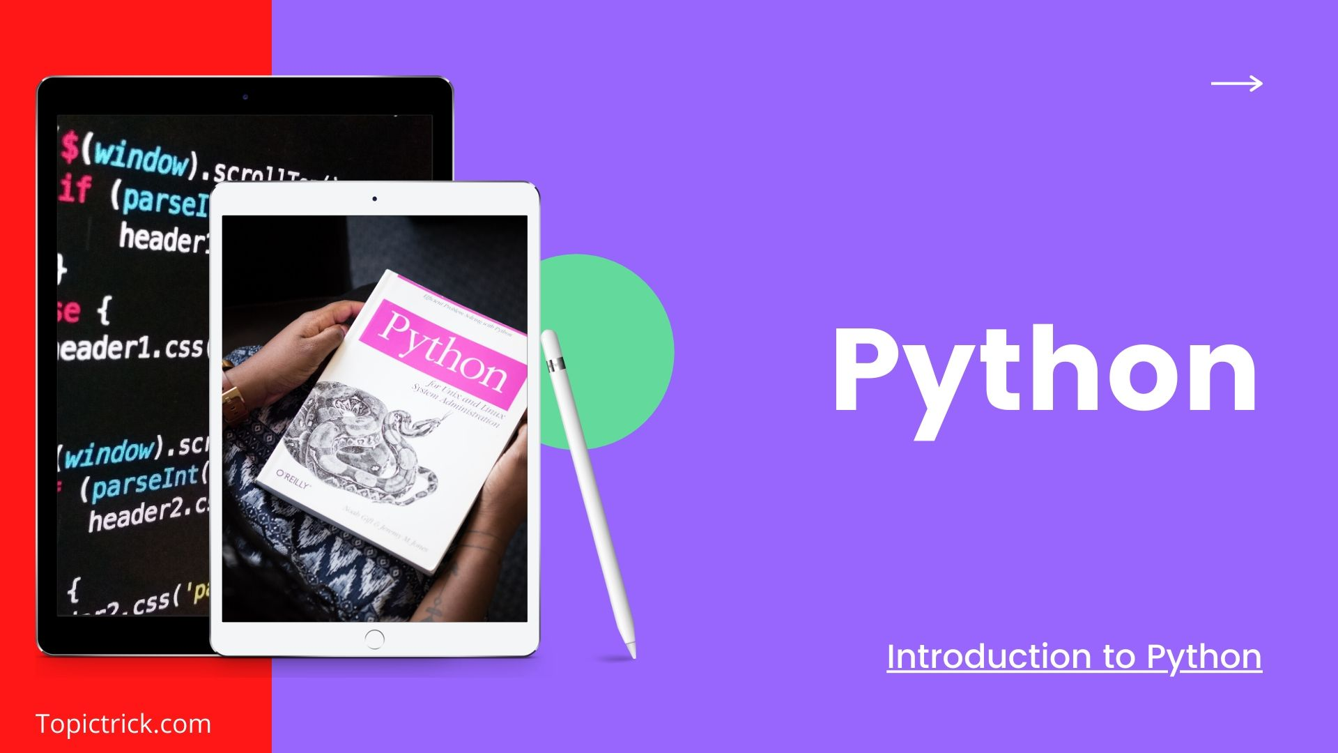 Python: Do You Really Need It? This Will Help You Decide! | Download Python | Learn Python.